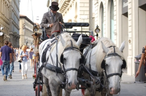 Carriage in Florence Italy